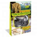 Triceratops Dino collection